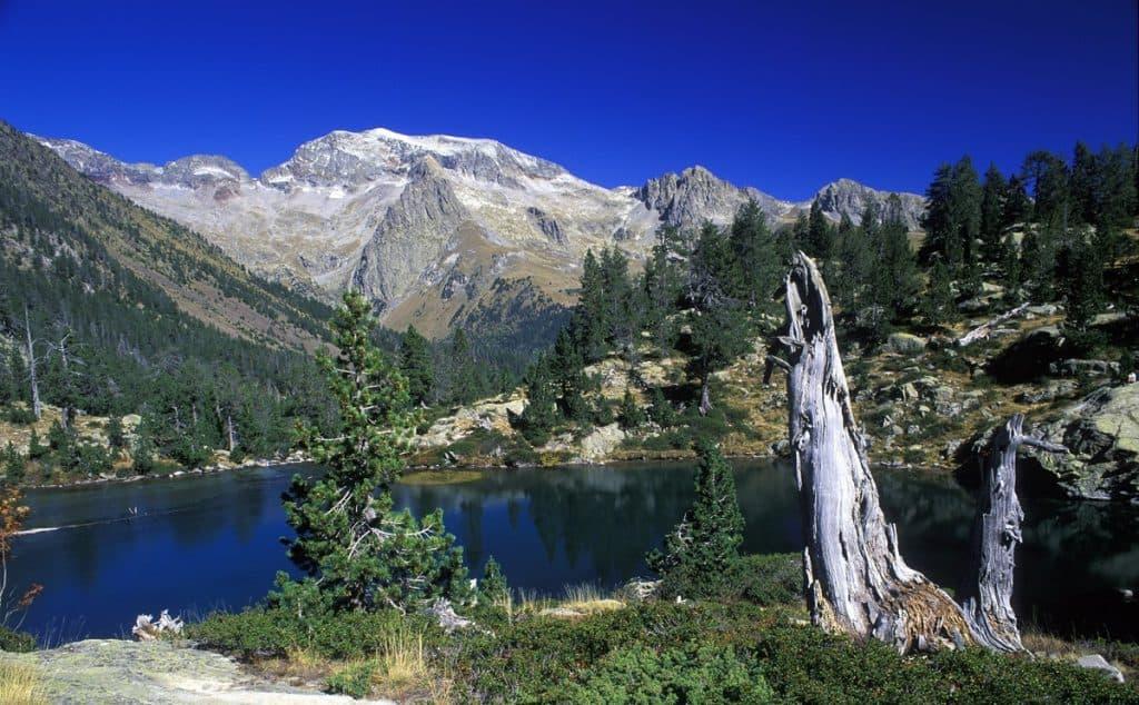 Ruta El Pirineo Aragonés
